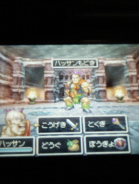 Dq6ds_02