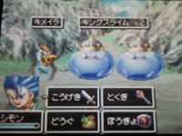Dq6ds_03
